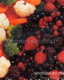 IQF Fruit, Bevroren Fruit, IQF Bessen, Bevroren Bessen, de Bevroren Puree van het Fruit, de Bevroren Puree van Bessen