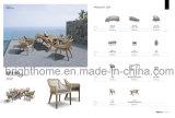 옥외 의자/등나무 의자/대나무 의자 정원 의자