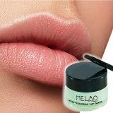 Le thé vert lèvre masque de sommeil meilleure solution pour les lèvres gercées et fissuré