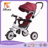 Triciclo del bambino delle 3 rotelle con il baldacchino ed il cestino