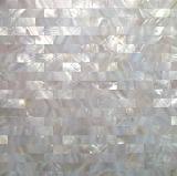 Prédio de ladrilhos, mosaicos de azulejos em mosaico, perto de ladrilhos de Shell (YBM1530)