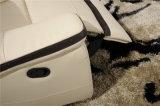 セットされる現代本革のソファーが付いている居間のソファー(434)