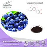 Extrait naturel de myrtille de 100% (anthocyanidines 15%, 25% ; 4:1 ~20 : 1) --Fournisseur de Nutramax