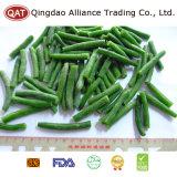 Gefrorene vollständige grüne Bohnen mit reiner Bescheinigung