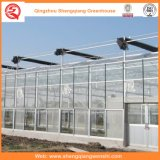 Venlo Type Glass Green Houses para Legumes / Flores