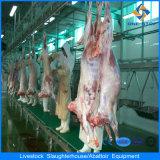 Strumentazione della Camera di macello delle pecore/capra del macchinario di trasformazione dei prodotti alimentari