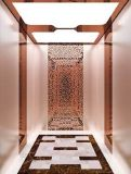 Los pasajeros Desenk ascensor ascensor con Cabina de acero inoxidable