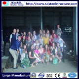 خفيفة إطار [ستيل ستروكتثر] خارجيّة قبّة منزل يجعل في الصين