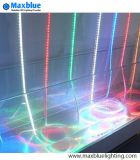 L'indicatore luminoso di striscia di RGB DC12V/DC24V/220V/SMD LED mette a nudo 5050/di indicatore luminoso di striscia del LED