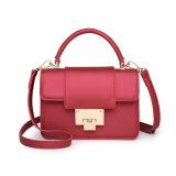 Sac à main en PVC pour dames Ladies Bag (04403)