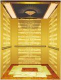 Aote Vvvf profissional conduz para casa o elevador da casa de campo (RLS-206)