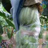 Tessuto non tessuto dei pp per la copertura del sacchetto della frutta
