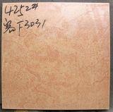 mattonelle di pavimento di ceramica di 400X400mm (4403)