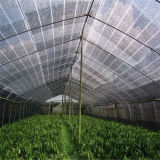 Fabrik-Großhandelsgarten und landwirtschaftliches Jungfrau HDPE Sun-Farbton-Netz