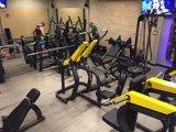 Macchina di ginnastica dell'edilizia della cassa Press/Tz-6062/Body/strumentazione di forma fisica caricate zolla