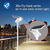 30W High Lithium Capacity Integrated Solar Street Light