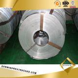 Uitstekende kwaliteit Gegalvaniseerde Steelband voor het Maken van de Buis