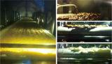 Essiccatore continuo liquido di vuoto per l'albume animale