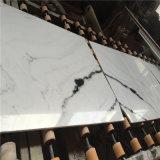 Blanc de marbre normal de panda de belle décoration d'intérieur de marbre blanche pour des dessus de salle de bains