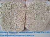 Food Grade бланшированные ядра арахиса бланшированные ядра Groundnut