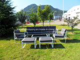 Mobilia del patio con l'insieme esterno del sofà del giardino del sofà del patio della Tabella