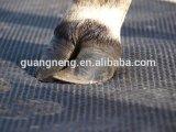 [15مّ] سميك بقرة حصان حجر السّامة حصيرة ثابتة مطّاطة