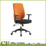 Сертификация персонала Управления BIFMA дешевые кресла (CF-В02)