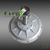 Fluxo Axial Coreless gerador de Íman Permanente para o gerador eólico Vertical