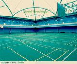 Пол напольных спортов, циновки настила пластмассы винила Badminton