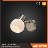 La China contemporánea proveedor certificado en el interior de lujo Lampara de pared