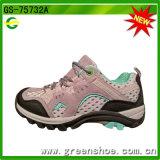 Mejor precio conveniente al por mayor que va de excursión los zapatos