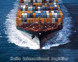 2014 Nouveau choix de l'océan logistique /l'expédition de la mer de Chine au port de Kemi