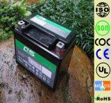 YTX7 YTX7L 12V7AH zwei Geschäftemacherbatterie