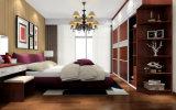 ハイエンド寝室のワードローブ(Zy-040)