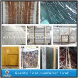 La Cina travertino/marmi a buon mercato bianchi/verde/nero/mosaico giallo /Waterjet per la lastra delle mattonelle di pavimento