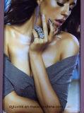 Индикация изготовленный на заказ знамени винила гибкого трубопровода плаката PVC средств печатание стикера стеклянной стены материального графическая рекламируя