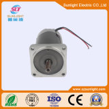 Motor Gleichstrom-12V/24V für Haushaltsgerät und Massage Electrecal Bewegungspinsel-Motor