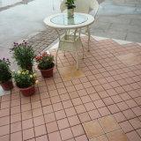 Venta caliente del diseño del azulejo de suelo de Porcellanato Pasillo del modelo nuevo del estándar europeo en mexicano