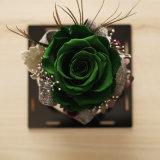 A promoção preservou a flor para o presente da decoração do carro