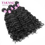 Cabelo malaio Curly italiano do Virgin da forma