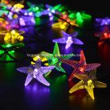 Cadena Solar Blue estrellas de mar de luz de flash para la Navidad