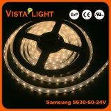Bandes lumineuses superbes d'éclairage LED de SMD 5630 RVB pour des mails