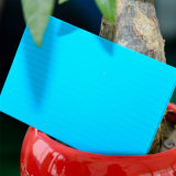 Panneau creux en polycarbonate anti-brouillard coloré avec certificat ISO