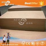 Contre-plaqué commercial pour les meubles (1220X2440mm)