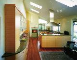 A melamina enfrentou gabinetes de cozinha do cartão