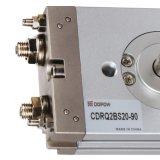 Dopow Crq2/Cdrq2のコンパクトな空気のロータリー・アクチュエータ