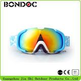 Anti lunettes de ski de regain de la belle jeunesse colorée