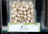 Semilla de loto orgánica a granel, semilla de loto sin núcleo