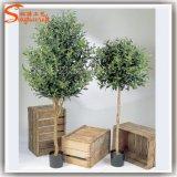 De hete Olijfboom van de Bonsai van de Verkoop Professionele In het groot Kunstmatige voor de Decoratie van het Huis