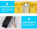 Incubadora automática marcada do ovo do Ce de Hhd mini para a venda (YZ8-48)